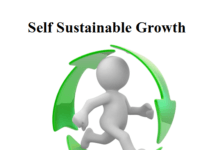 self sustainable growth rate